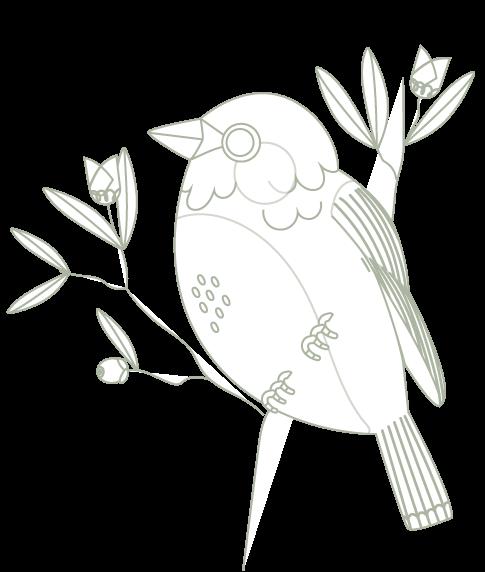 oiseaux-rares